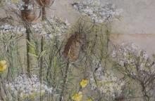 Détail-plate-bande-10 Fleurs sauvages