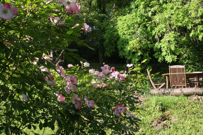 Giverny chambres d 39 h tes le coin des artistes for Artistes de jardin