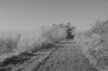 2013-12-11b - Giverny