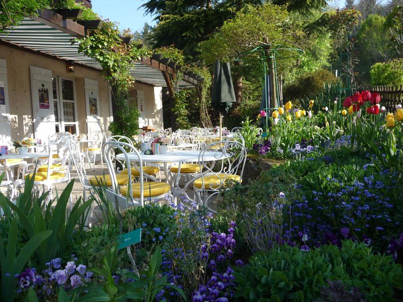 Giverny   Restaurant   LES NYMPHÉAS