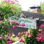Giverny | Restaurant | LES NYMPHÉAS