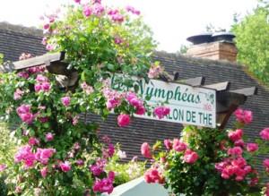 Entree-Nympheas