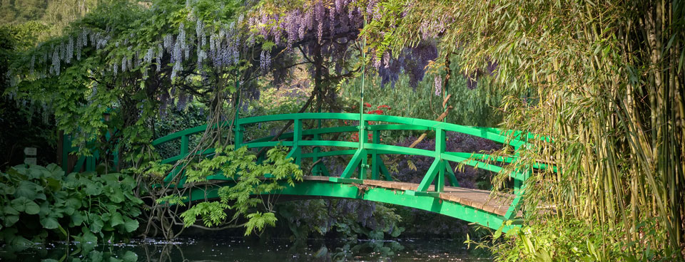The Japanese bridge and its mauve wisteria