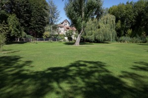 jardin-(2)